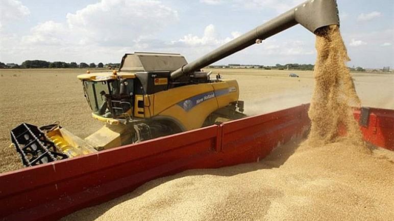 المباشرة بعملية تسويق الحنطة في ذي قار