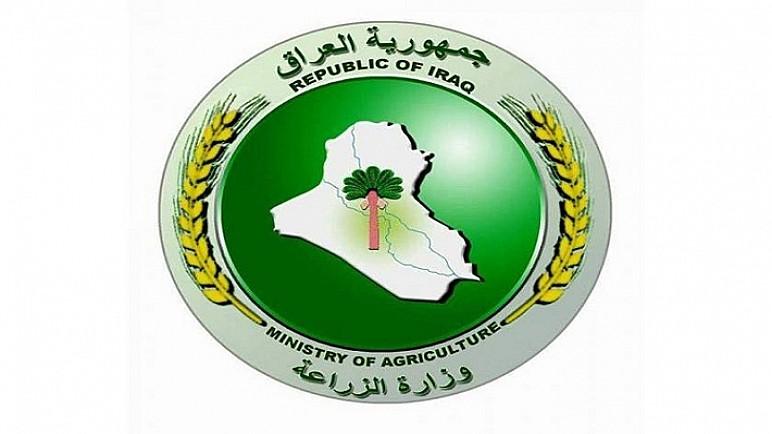 وزارة الزراعة: تخصيص 483 مليار لدفع مستحقات الفلاحين من مسوقي الحنطة والشعير