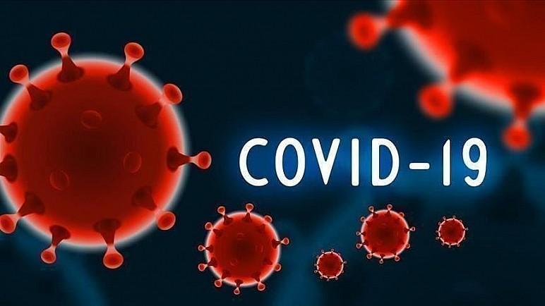 ذي قار تسجل 82 اصابة و3 حالات وفيات جديدة بفيروس كورونا